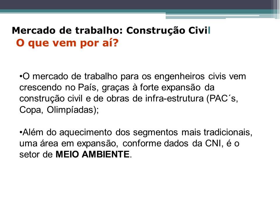 O mercado de trabalho para os engenheiros civis vem crescendo no País, graças à forte expansão da construção civil e de obras de infra-estrutura (PAC´