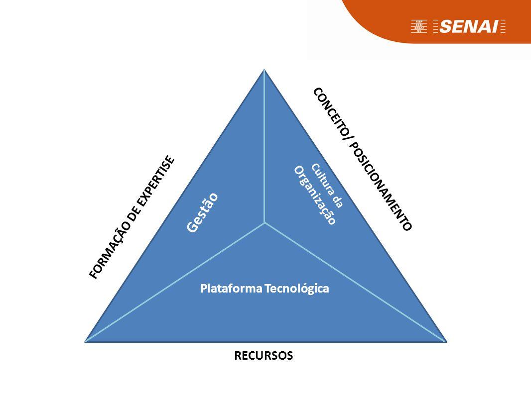 Plataforma Tecnológica Gestão Cultura da Organização FORMAÇÃO DE EXPERTISE CONCEITO/ POSICIONAMENTO RECURSOS