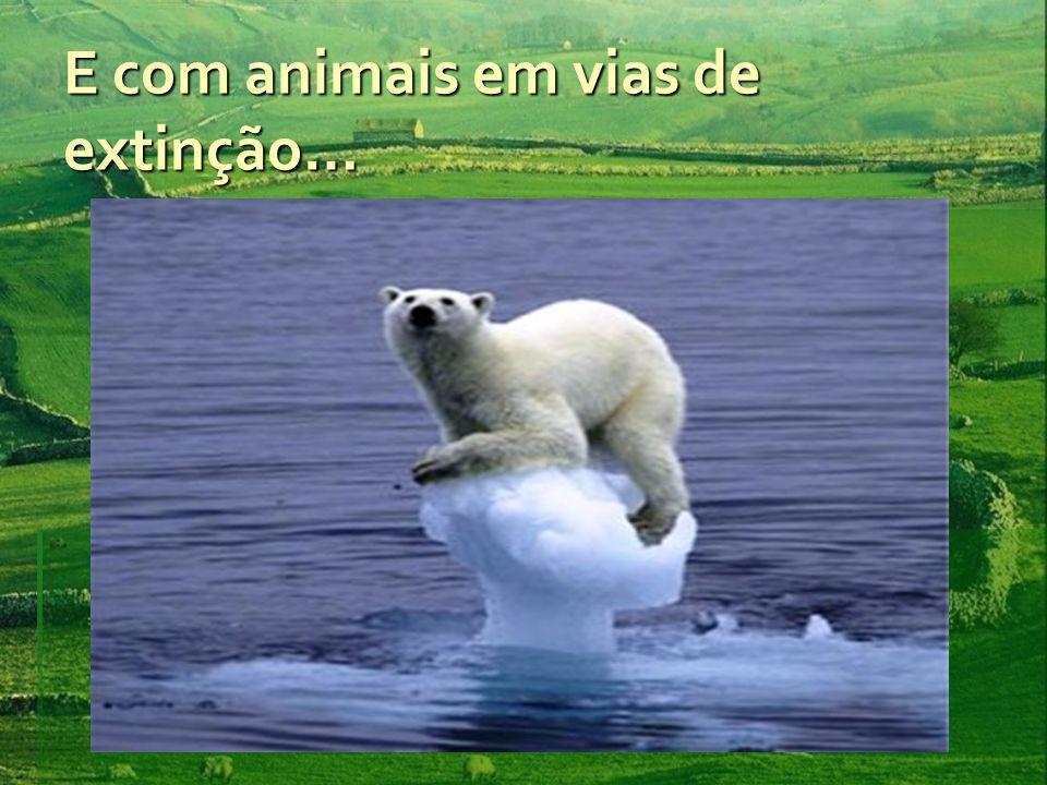 E com animais em vias de extinção…