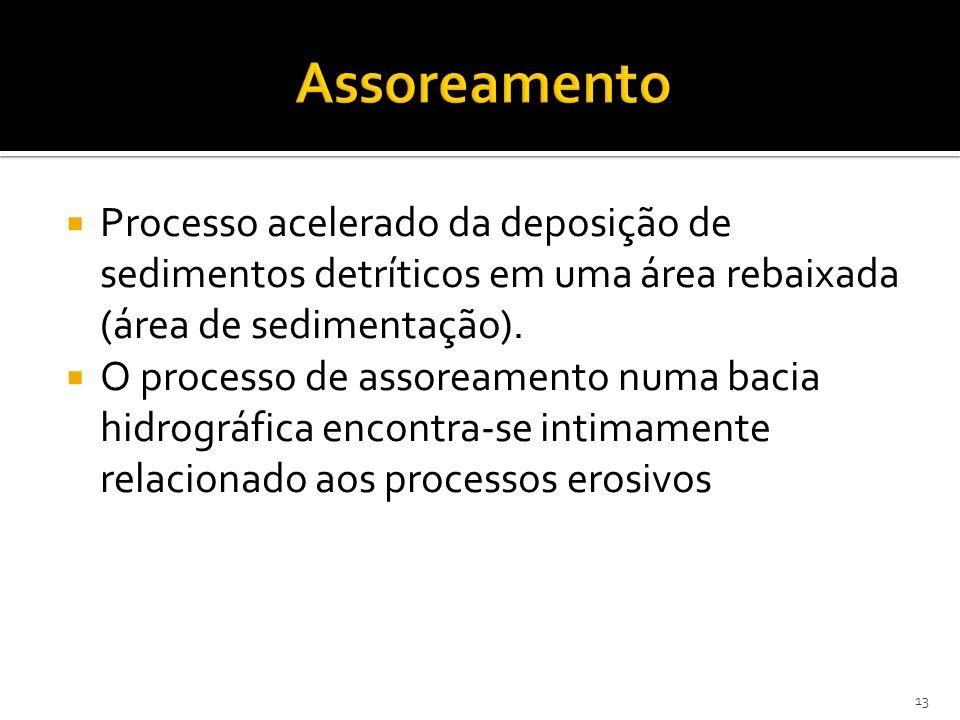 Processo acelerado da deposição de sedimentos detríticos em uma área rebaixada (área de sedimentação). O processo de assoreamento numa bacia hidrográf