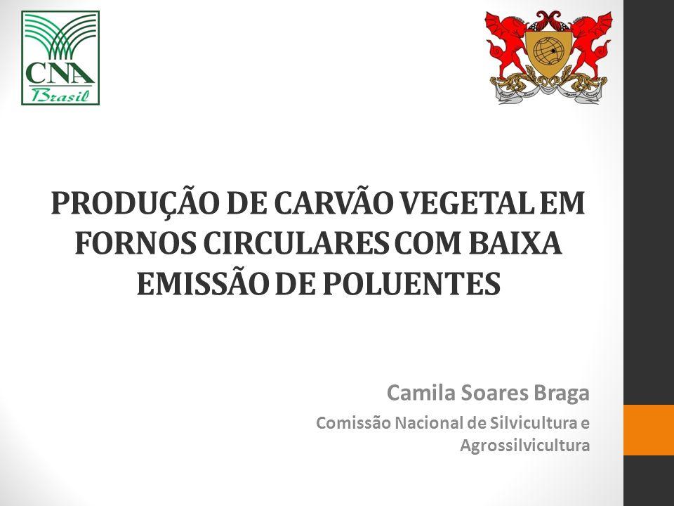 PRODUÇÃO DE CARVÃO VEGETAL EM FORNOS CIRCULARES COM BAIXA EMISSÃO DE POLUENTES Camila Soares Braga Comissão Nacional de Silvicultura e Agrossilvicultu