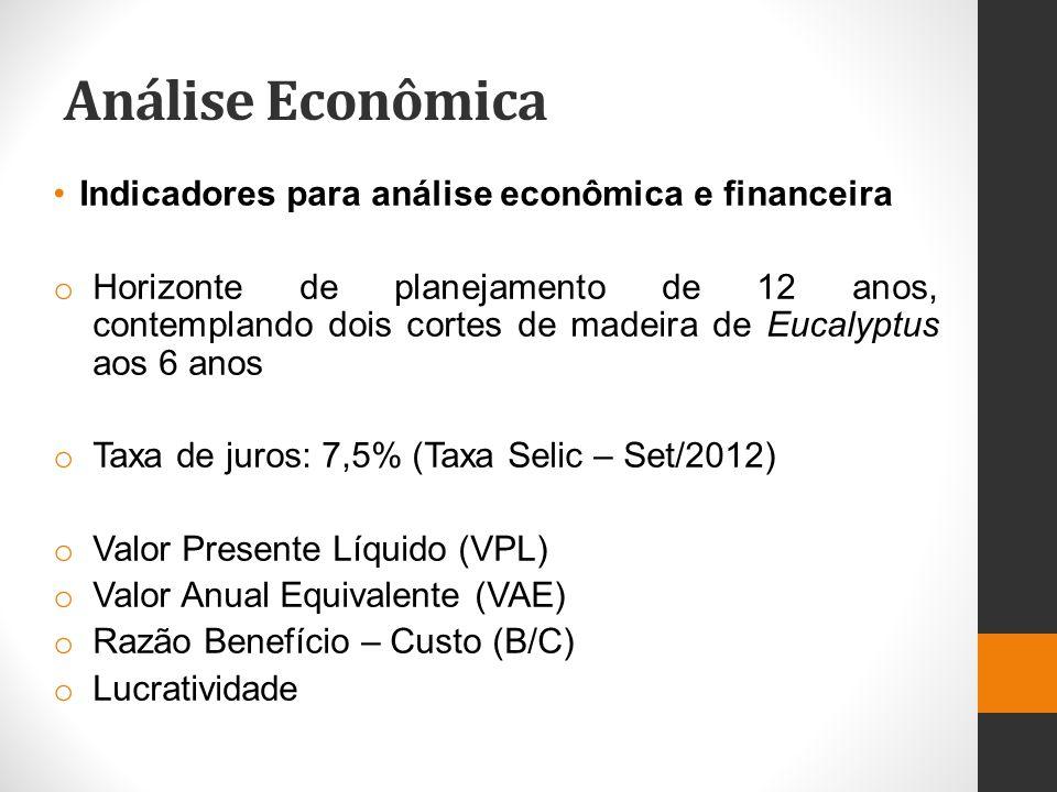 Análise Econômica Indicadores para análise econômica e financeira o Horizonte de planejamento de 12 anos, contemplando dois cortes de madeira de Eucal
