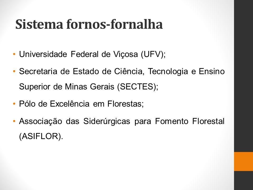 Sistema fornos-fornalha Universidade Federal de Viçosa (UFV); Secretaria de Estado de Ciência, Tecnologia e Ensino Superior de Minas Gerais (SECTES);