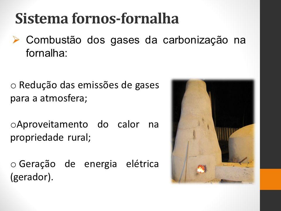 Sistema fornos-fornalha Fase Faixa de Temperatura Tempo Manutenção Fenômeno I100-150 o C15-16 horas Liberação de vapor de água – secagem da madeira, fase endotérmica II150-275 o C11-12 horas Degradação das hemiceluloses, aumento da emissão de gases, fase endotérmica III275-400 o C23-24 horas Degradação da celulose, grande produção de gases, fase exotérmica.