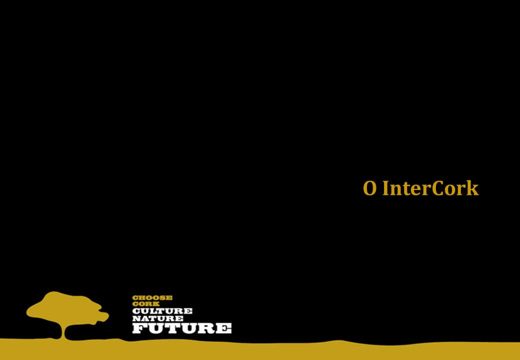 15.Julho.09: Assinatura do programa; Julho a Dezembro.09: Concurso público, análise de propostas e coordenação com parceiros locais; Janeiro/Fevereiro.10: Adjudicação dos contratos e início dos briefings; Duração total operacional: 24 meses; Orçamento total com IVA incluído: 21M – Rolhas: 12,5M – Materiais de Construção e Decoração: 6M – Acções Transversais: 2,5M.