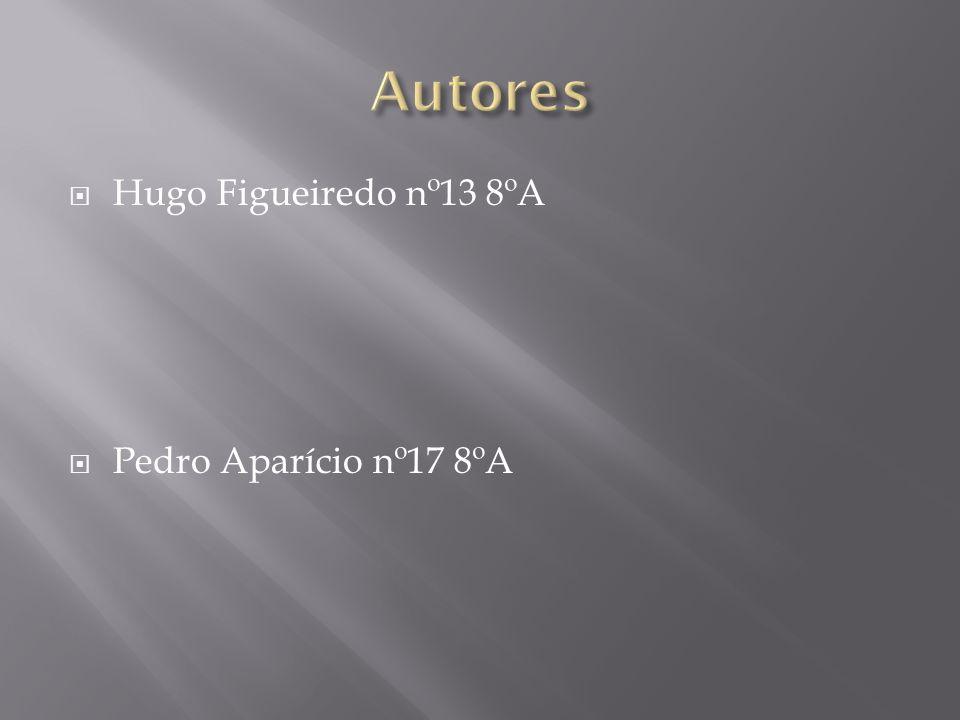 Hugo Figueiredo nº13 8ºA Pedro Aparício nº17 8ºA