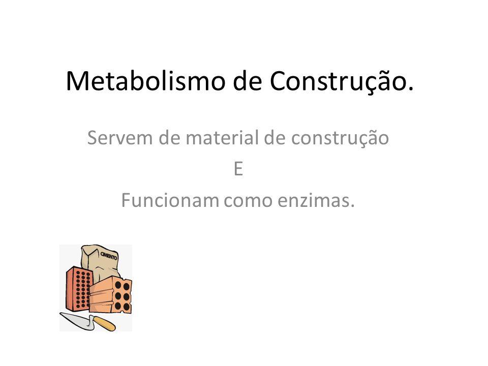 Metabolismo de Construção. Servem de material de construção E Funcionam como enzimas.