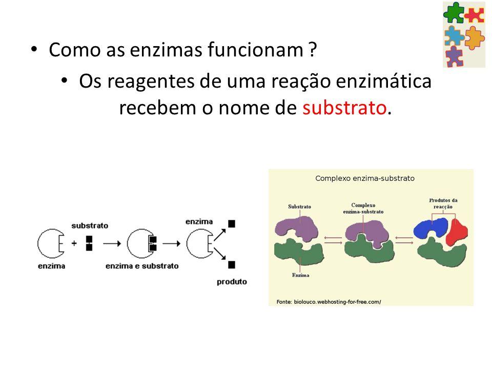 Como as enzimas funcionam ? Os reagentes de uma reação enzimática recebem o nome de substrato.