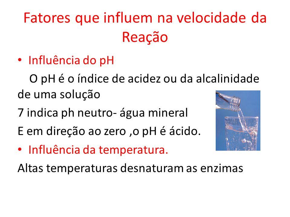 Fatores que influem na velocidade da Reação Influência do pH O pH é o índice de acidez ou da alcalinidade de uma solução 7 indica ph neutro- água mine