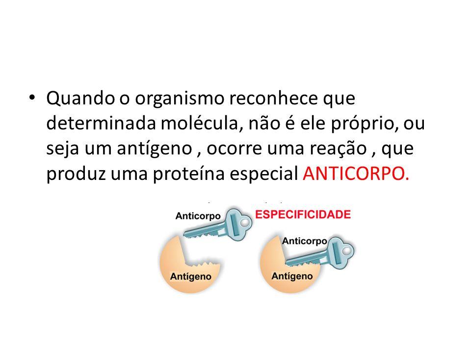 Quando o organismo reconhece que determinada molécula, não é ele próprio, ou seja um antígeno, ocorre uma reação, que produz uma proteína especial ANT
