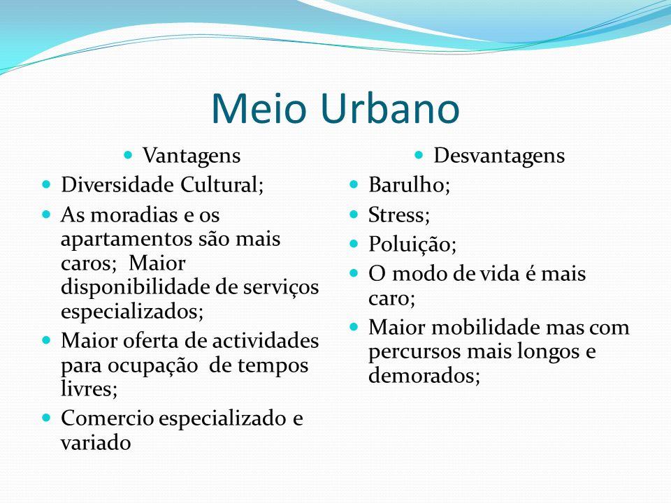 Meio Urbano Vantagens Diversidade Cultural; As moradias e os apartamentos são mais caros; Maior disponibilidade de serviços especializados; Maior ofer