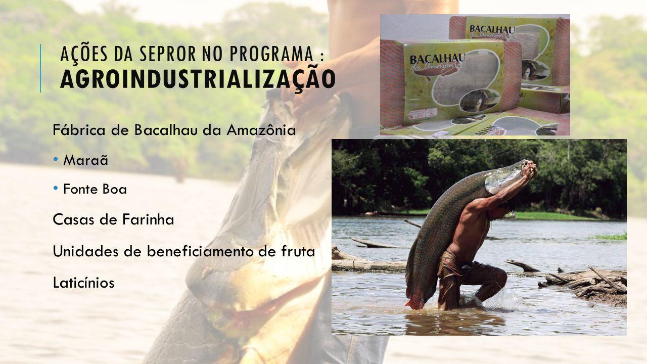 AÇÕES DA SEPROR NO PROGRAMA : AGROINDUSTRIALIZAÇÃO Fábrica de Bacalhau da Amazônia Maraã Fonte Boa Casas de Farinha Unidades de beneficiamento de frut