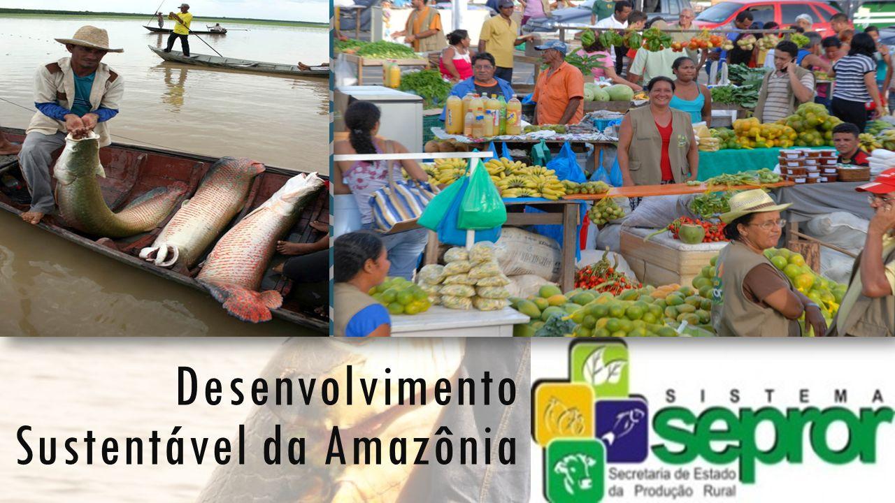Desenvolvimento Sustentável da Amazônia