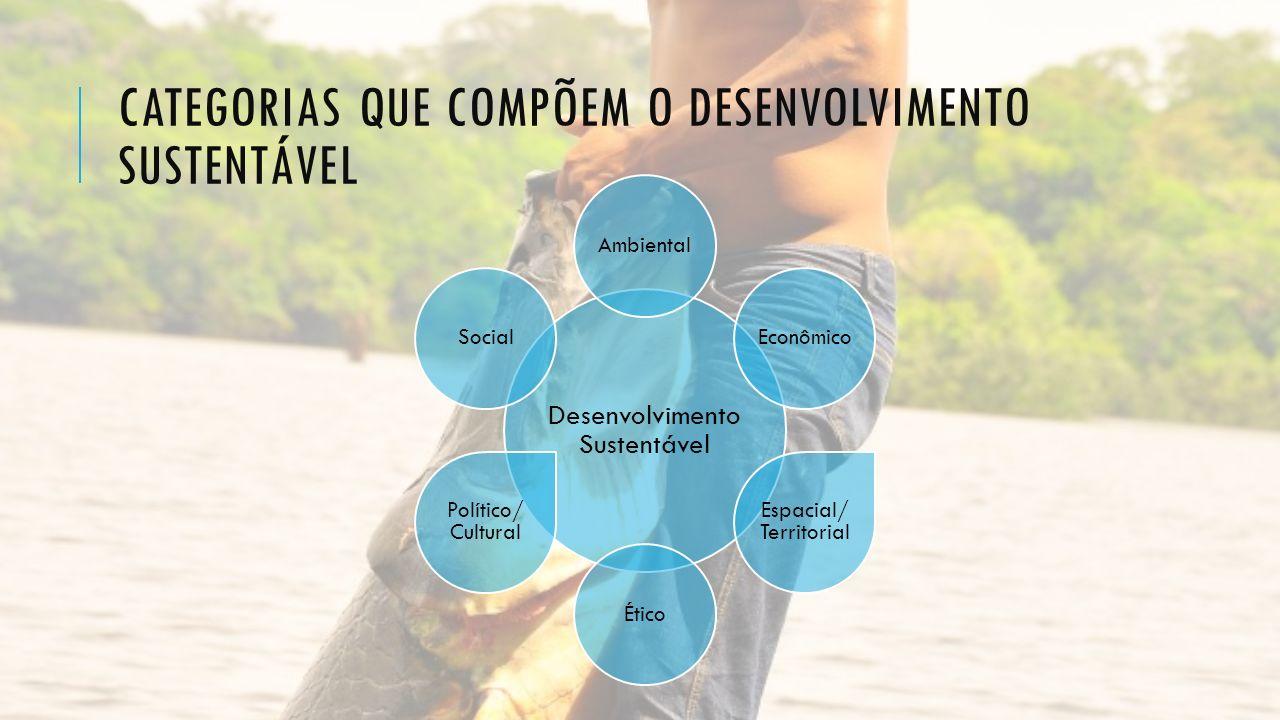 CATEGORIAS QUE COMPÕEM O DESENVOLVIMENTO SUSTENTÁVEL Desenvolvimento Sustentável AmbientalEconômico Espacial/ Territorial Ético Político/ Cultural Soc