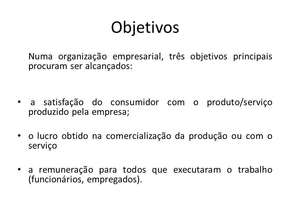 Objetivos Numa organização empresarial, três objetivos principais procuram ser alcançados: a satisfação do consumidor com o produto/serviço produzido