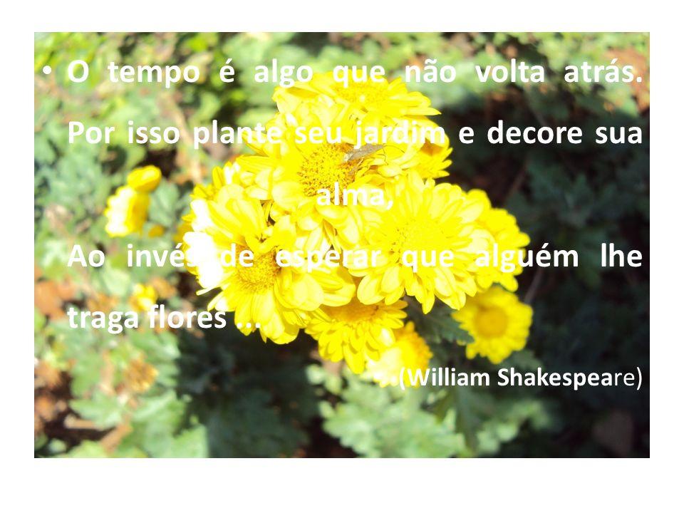 O tempo é algo que não volta atrás. Por isso plante seu jardim e decore sua alma, Ao invés de esperar que alguém lhe traga flores... (William Shakespe