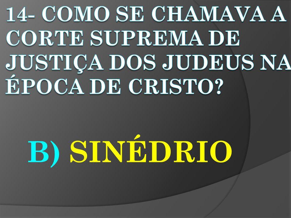 B) SINÉDRIO