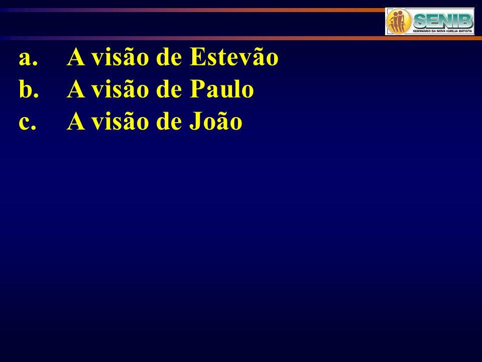 a.A visão de Estevão b.A visão de Paulo c.A visão de João