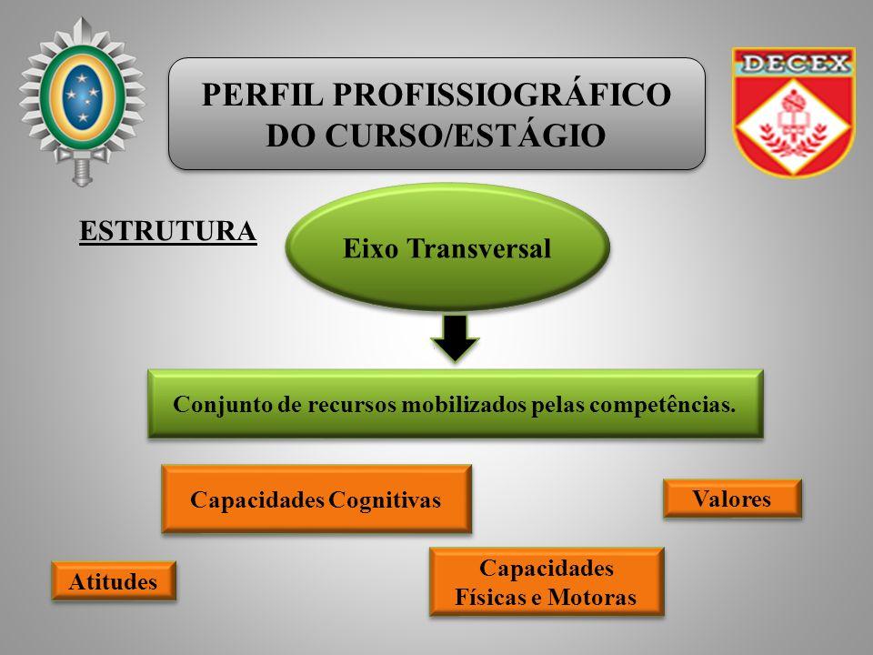 PERFIL PROFISSIOGRÁFICO DO CURSO/ESTÁGIO PERFIL PROFISSIOGRÁFICO DO CURSO/ESTÁGIO ESTRUTURA Eixo Transversal Capacidades Cognitivas Atitudes Valores C
