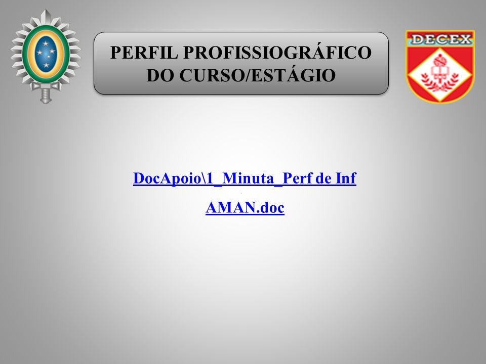 PERFIL PROFISSIOGRÁFICO DO CURSO/ESTÁGIO PERFIL PROFISSIOGRÁFICO DO CURSO/ESTÁGIO DocApoio\1_Minuta_Perf de Inf AMAN.doc