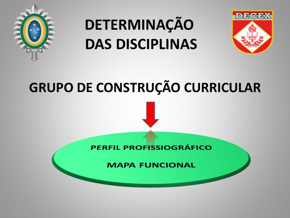 DETERMINAÇÃO DAS DISCIPLINAS GRUPO DE CONSTRUÇÃO CURRICULAR