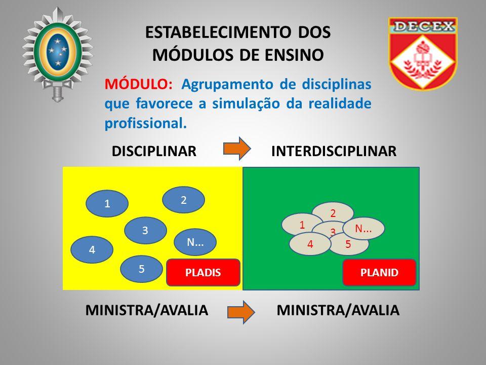 ESTABELECIMENTO DOS MÓDULOS DE ENSINO MINISTRA/AVALIA 1 3 5 2 N... 4 2 1 3 5 4 MINISTRA/AVALIA DISCIPLINARINTERDISCIPLINAR MÓDULO: Agrupamento de disc