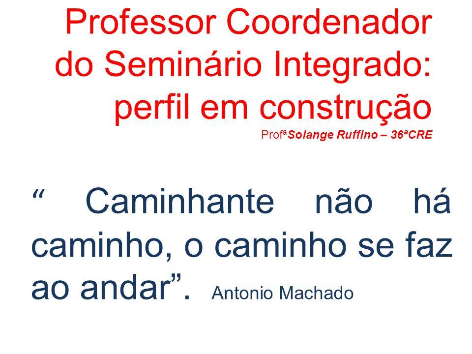 Professor Coordenador do Seminário Integrado: perfil em construção ProfªSolange Ruffino – 36ªCRE Caminhante não há caminho, o caminho se faz ao andar.