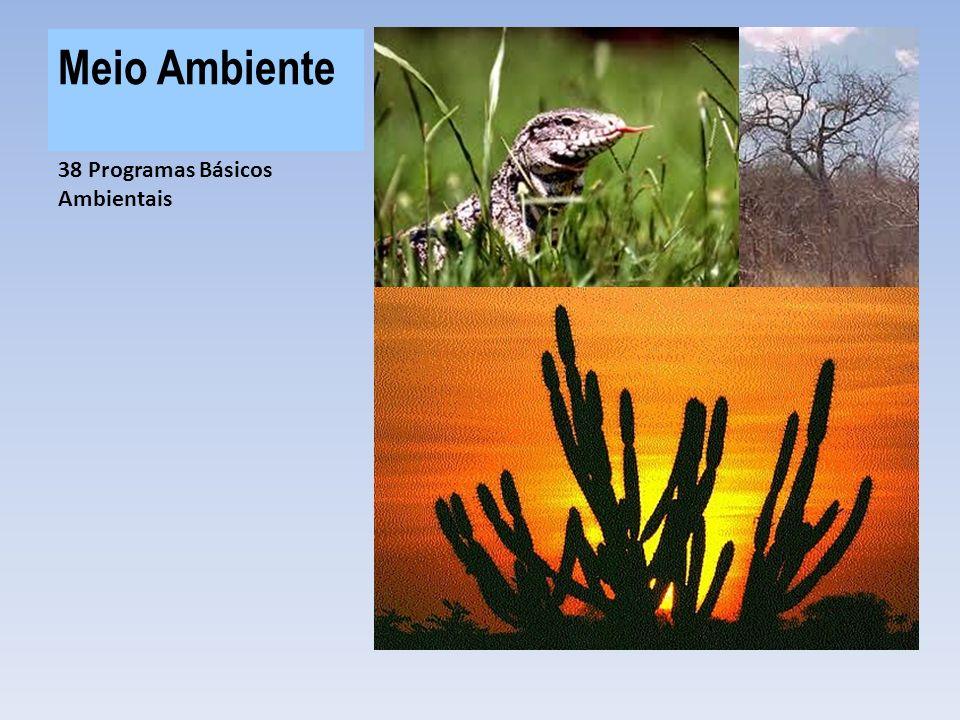 Meio Ambiente R$ 232,8 MI investidos no programas ambientais do PISF 38 Programas Básicos Ambientais