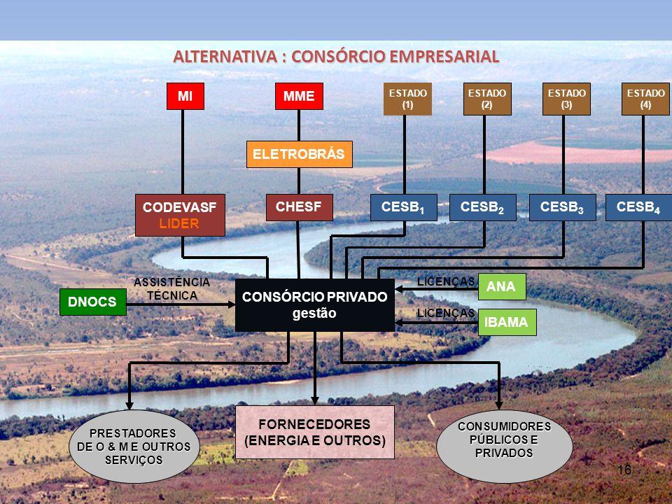 16 ALTERNATIVA : CONSÓRCIO EMPRESARIAL MME ELETROBRÁS CHESF CONSÓRCIO PRIVADO gestão FORNECEDORES (ENERGIA E OUTROS) MI ESTADO (1) ESTADO (2) ESTADO (3) CODEVASF LIDER CESB 1 CESB 2 CESB 3 DNOCS ANA ASSISTÊNCIA TÉCNICA LICENÇAS IBAMA PRESTADORES DE O & M E OUTROS SERVIÇOSCONSUMIDORES PÚBLICOS E PRIVADOS ESTADO (4) CESB 4