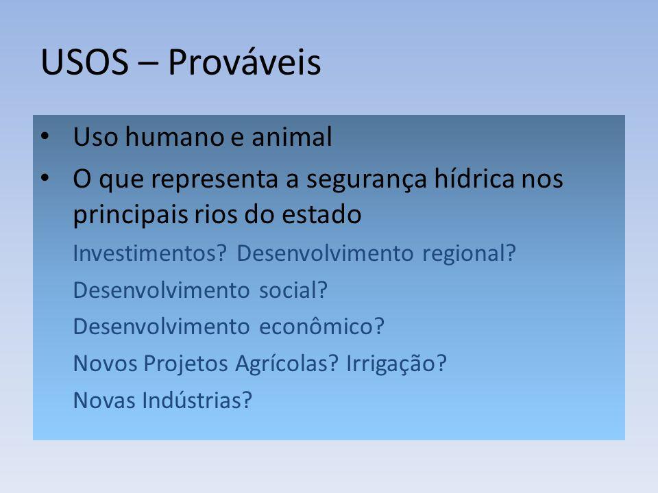 USOS – Prováveis Uso humano e animal O que representa a segurança hídrica nos principais rios do estado Investimentos? Desenvolvimento regional? Desen