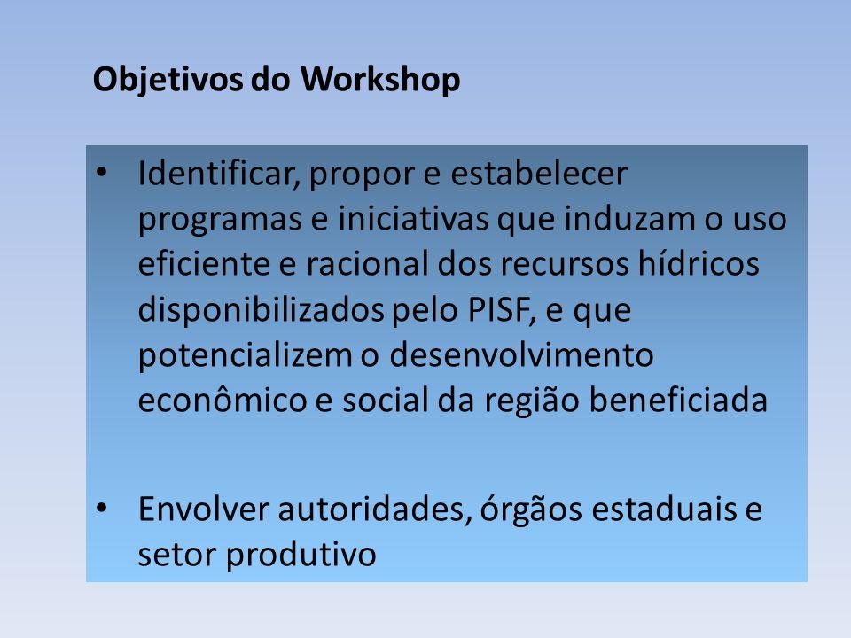 Objetivos do Workshop Identificar, propor e estabelecer programas e iniciativas que induzam o uso eficiente e racional dos recursos hídricos disponibilizados pelo PISF, e que potencializem o desenvolvimento econômico e social da região beneficiada Envolver autoridades, órgãos estaduais e setor produtivo