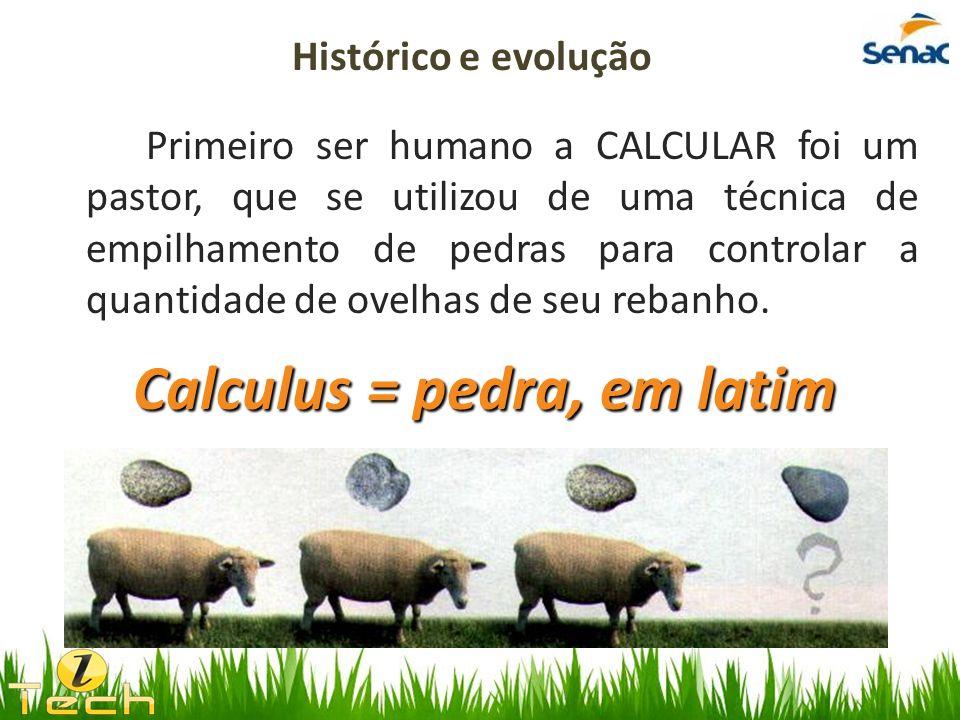 Primeiro ser humano a CALCULAR foi um pastor, que se utilizou de uma técnica de empilhamento de pedras para controlar a quantidade de ovelhas de seu r