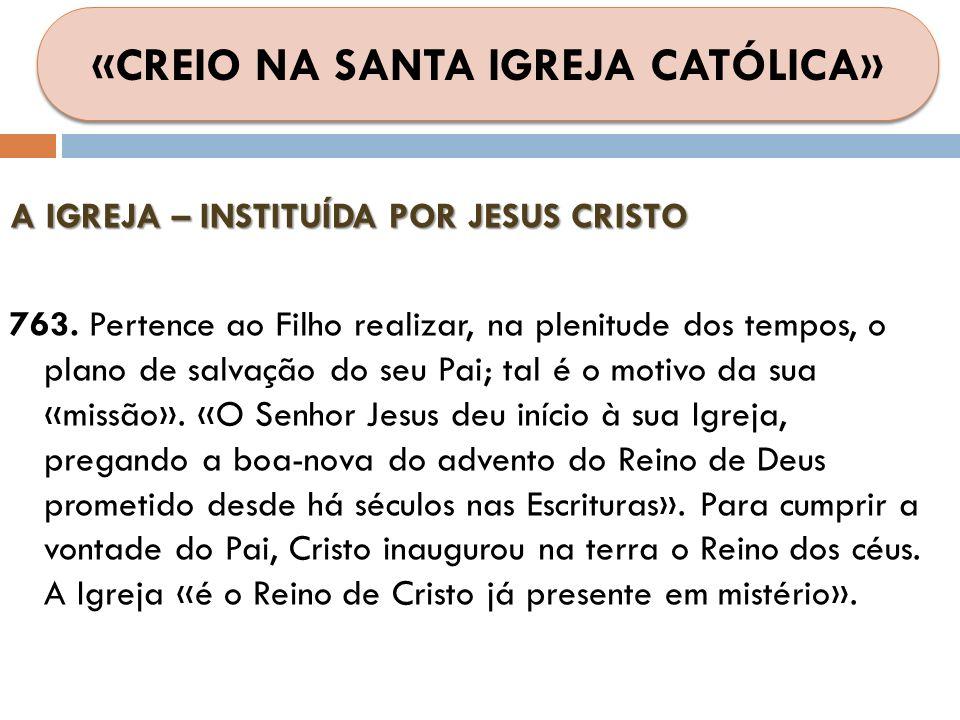 A IGREJA – INSTITUÍDA POR JESUS CRISTO 763. Pertence ao Filho realizar, na plenitude dos tempos, o plano de salvação do seu Pai; tal é o motivo da sua