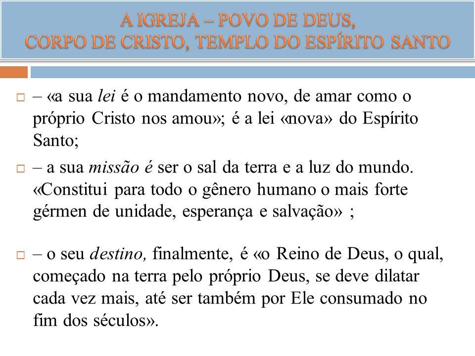 – «a sua lei é o mandamento novo, de amar como o próprio Cristo nos amou»; é a lei «nova» do Espírito Santo; – a sua missão é ser o sal da terra e a l