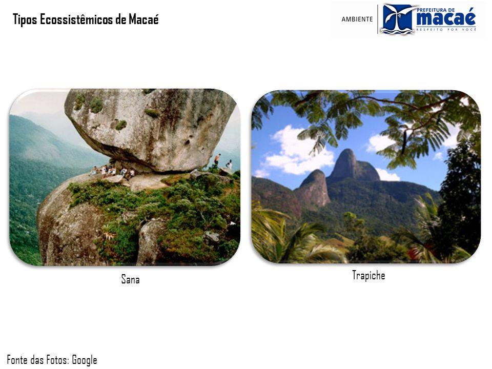 Tipos Ecossistêmicos de Macaé Sana Fonte das Fotos: Google Trapiche
