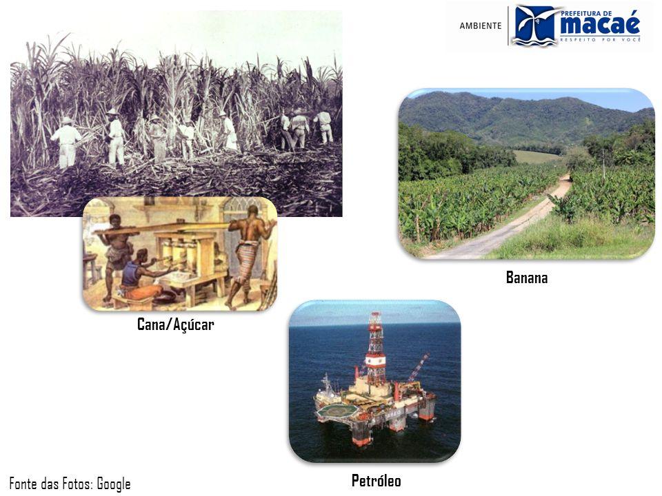 Cana/Açúcar Banana Petróleo Fonte das Fotos: Google