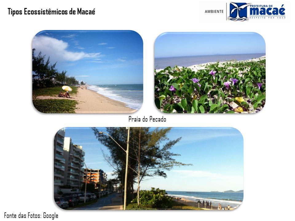 Tipos Ecossistêmicos de Macaé Praia do Pecado Fonte das Fotos: Google