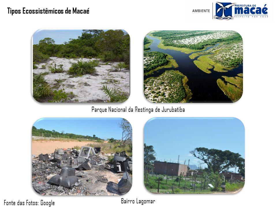Tipos Ecossistêmicos de Macaé Fonte das Fotos: Google Parque Nacional da Restinga de Jurubatiba Bairro Lagomar