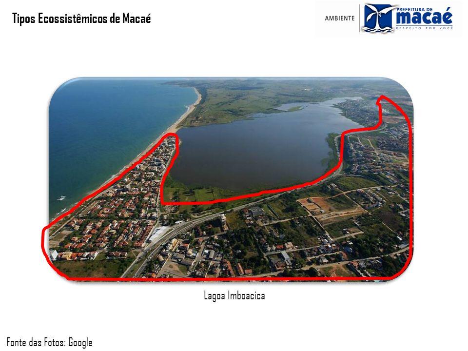 Tipos Ecossistêmicos de Macaé Lagoa Imboacica Fonte das Fotos: Google