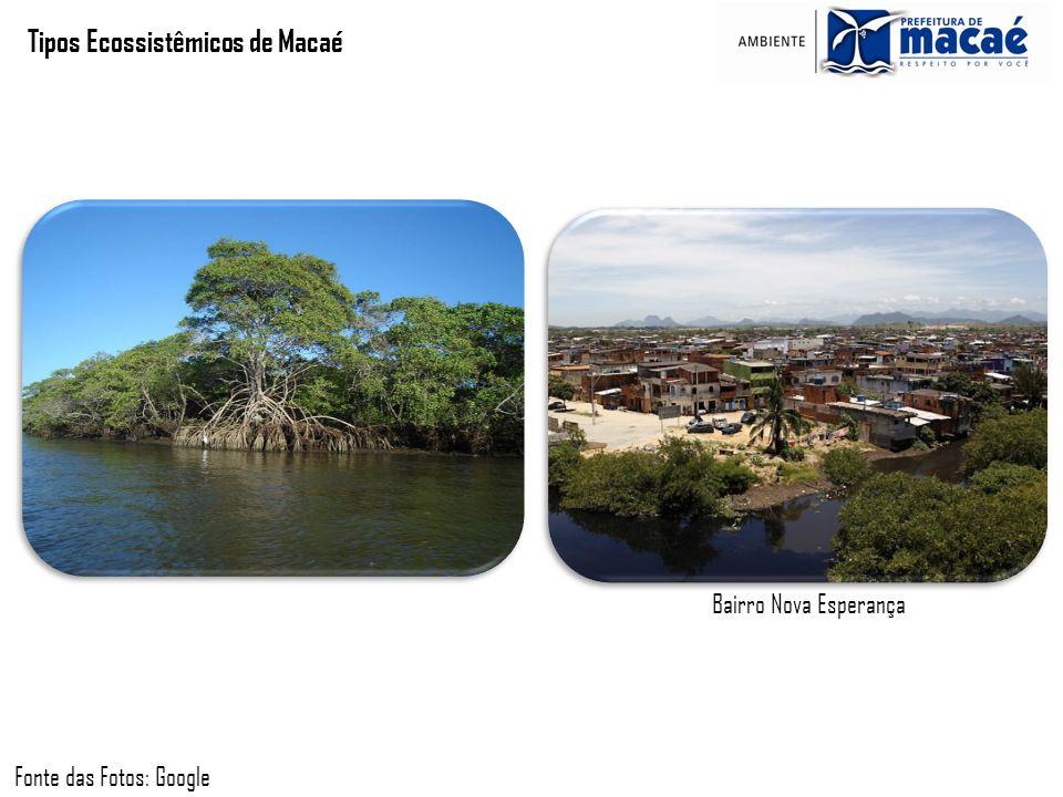 Tipos Ecossistêmicos de Macaé Fonte das Fotos: Google Bairro Nova Esperança