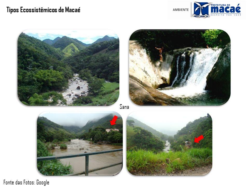 Tipos Ecossistêmicos de Macaé Fonte das Fotos: Google Sana