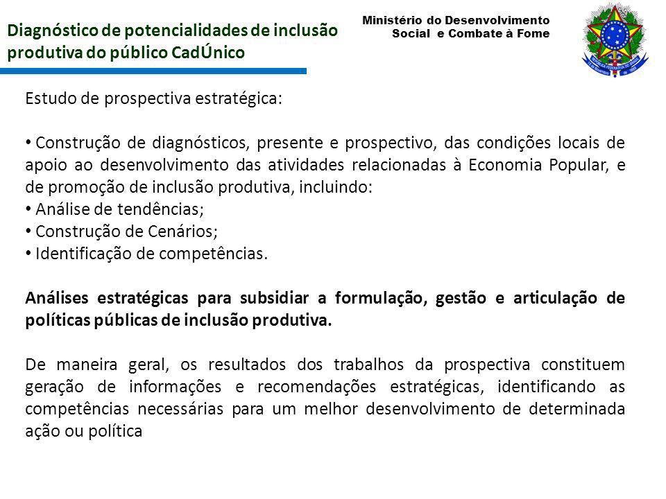 Ministério do Desenvolvimento Social e Combate à Fome Diagnóstico de potencialidades de inclusão produtiva do público CadÚnico Estudo de prospectiva e