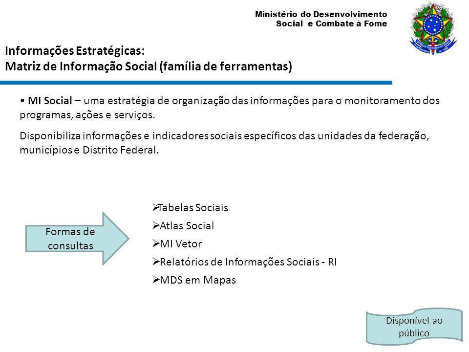 Ministério do Desenvolvimento Social e Combate à Fome MI Social – uma estratégia de organização das informações para o monitoramento dos programas, aç