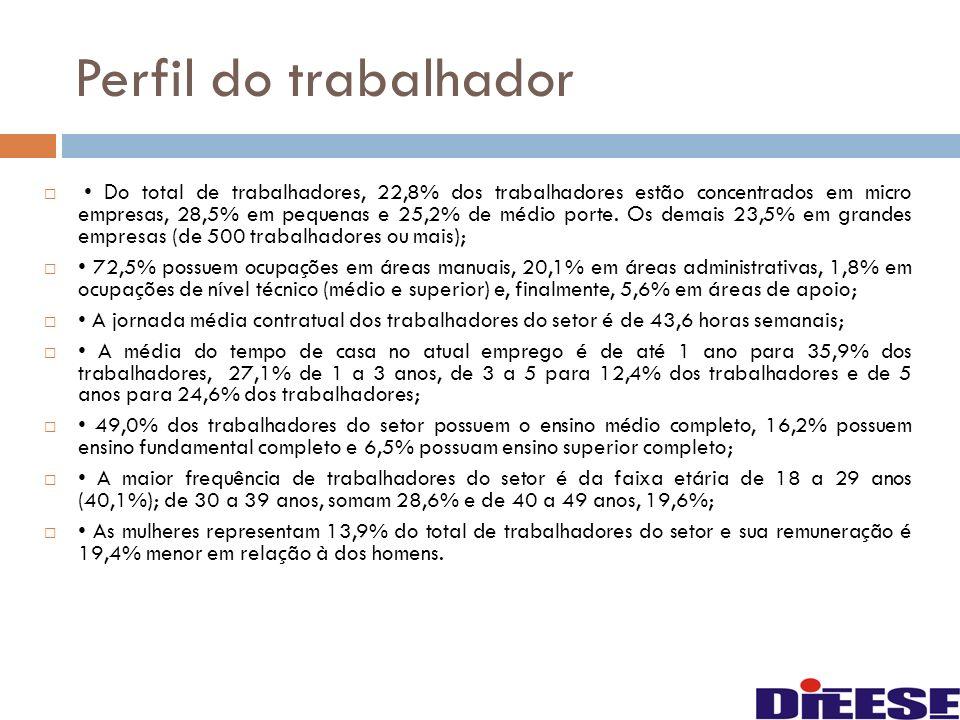 Perfil do trabalhador Do total de trabalhadores, 22,8% dos trabalhadores estão concentrados em micro empresas, 28,5% em pequenas e 25,2% de médio port
