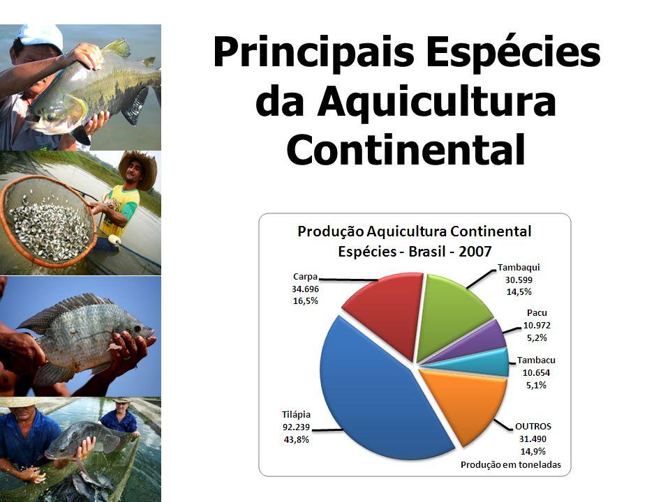 Principais Espécies da Aquicultura Continental