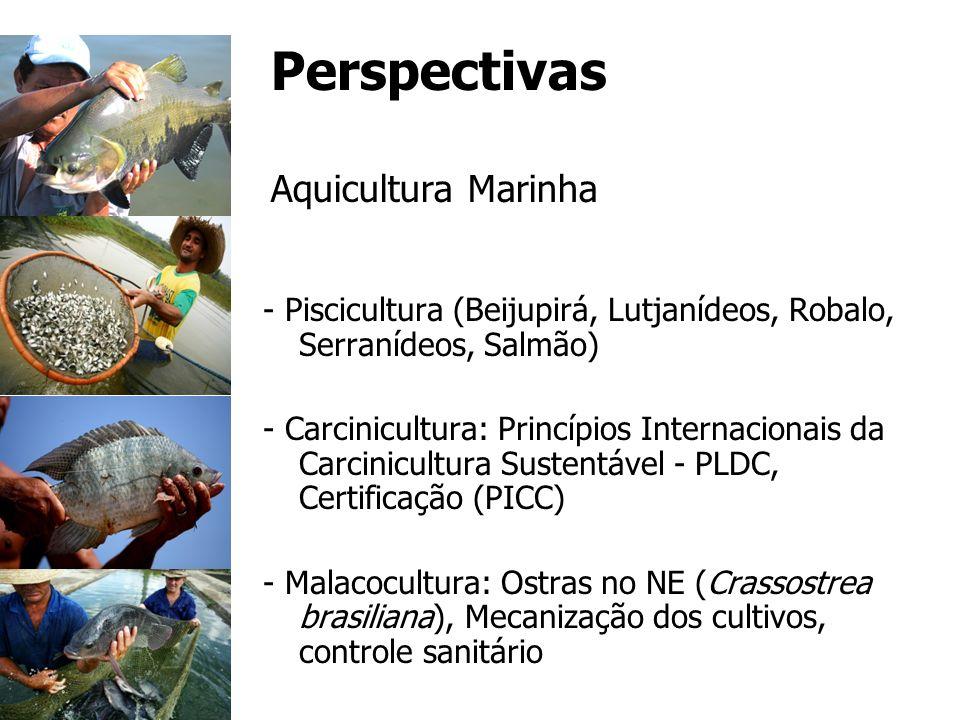 Perspectivas Aquicultura Marinha - Piscicultura (Beijupirá, Lutjanídeos, Robalo, Serranídeos, Salmão) - Carcinicultura: Princípios Internacionais da C