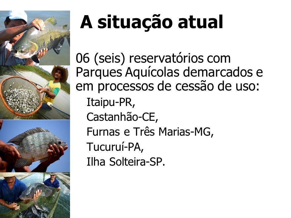 A situação atual 06 (seis) reservatórios com Parques Aquícolas demarcados e em processos de cessão de uso: Itaipu-PR, Castanhão-CE, Furnas e Três Mari
