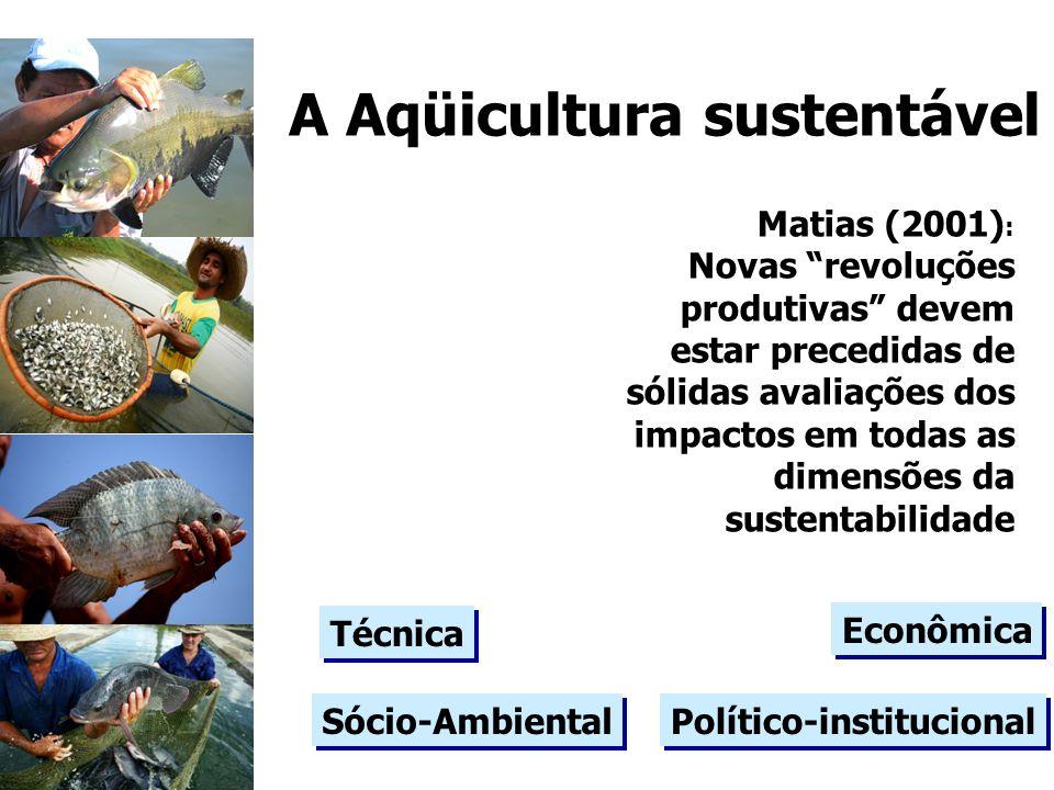Matias (2001) : Novas revoluções produtivas devem estar precedidas de sólidas avaliações dos impactos em todas as dimensões da sustentabilidade Sócio-