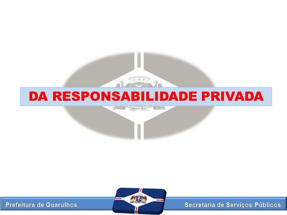 DA RESPONSABILIDADE PRIVADA