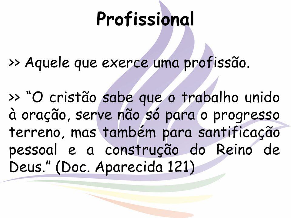 Profissional >> Aquele que exerce uma profissão. >> O cristão sabe que o trabalho unido à oração, serve não só para o progresso terreno, mas também pa